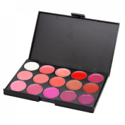 Vnfire 15 Colour Lip Gloss Lipstick Palette Cosmetic Makeup Kit Set
