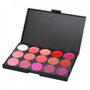Vnfire 15 Colour Lip Gloss Lipstick Palette Cosmetic Makeup Kit Set