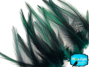 Rooster Feathers, Peacock Green Laced Medium Rooster Cape Feathers - 10 Pieces