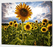 Paint By Number Kits No Blending / No Mixing Linen Canvas DIY Painting - Big Sunflower