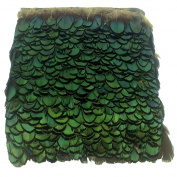Pheasant Feather Trim Lady Amherst Feather Fringe Green Pack of 10 Yards