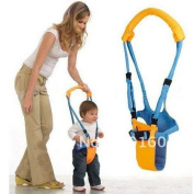 New Belt Moon Baby Walker - Learn To Walk Assistant/Helper-Orange and blue