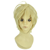 Amybria Straight 30cm Weight 210ml Straight Short Hair Heat Resistant Anime Costume Cosplay Wig APH Axis powers UK With Free Wig Cap Blonde