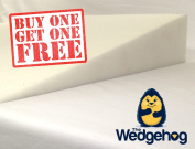 DOUBLE PACK - Wedgehog Moses Basket Reflux Wedge (28cm).