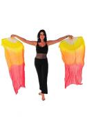 Belly Dancer Fan Veil