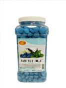Spa Redi Bath Fizz Tablet Mint & Eucalyptus Gallon