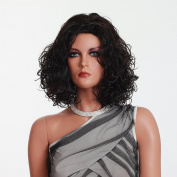 African Wigs Black Women Wigs Oprah Hair Style Halloween Wigs Short Synthtic High Quality Wigs Curly Wigs 3820b