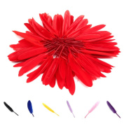 Voberry® 100 Pcs Home Decor Decorating Improvement Goose Feathers for Craft Wedding