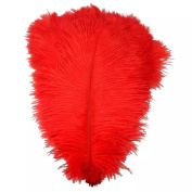 Natural Rigid Tube Ostrich Feathers Plume for Wedding Centrepieces Home Decoration Pack Of 50
