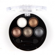 Easy Lifestyles New 5 Colours Shiny Pearly Lustre Eyeshadow Makeup Palette Cosmetic Set