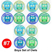 BOYS OWLS Baby Month Onesie Stickers Baby Shower Gift Photo Shower Stickers, baby shower gift by OnesieStickers