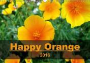 Happy Orange 2016