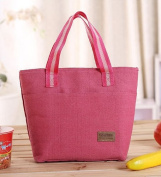 BDS - Canvas Ultra Light Pouch Bag, Lunch Bag, Cold Pack Cooler Bag, Picnic Bag, Lunch Bag, Travel Bag, Makeup Bag with Zipper Mouth - Many Colour Available
