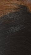 Diana Bohemian Wig Synthetic Wig - Luna-DP1B/30