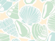 Seaside Beach Shells Wedding Gift Wrap - 4.9m Roll