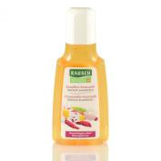 Rausch Chamomile Amaranth Travel Repair Shampoo 40ml
