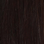 Pre-Bonded Remy Hair Extensions Stick Tip 100 % Indian Dark Brown 2#
