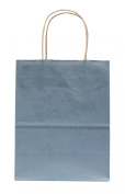 Premier Packaging AMZ-204107 15 Count Colours on White Shopper Gift Bag, 21cm by 27cm , Light Blue