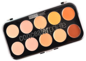 10 Colours Professional Concealer Palette Salon/Party Contour Face Cream Makeup
