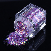 ECBASKET 1 Jar Fashion Acrylic Nail Polish Dust Glitter Powder DIY Shinny Nail Slices # Red Purple