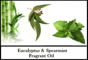 Eucalyptus Spearmint Fragrant Oil for Candle Soap Incense 100ml