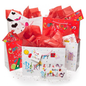 20pc Gift Bag Sets Tissue Cards Sequins Congratulations Happy Birthday, 5 Bags