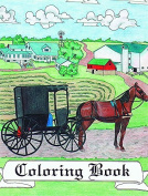Colouring Books, Amish Themed, Buggy, Barn, Cat, Schoolhouse, Farm Animals, ABC, Assorted Styles