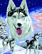 Wooden Framed Paint By Number Animals No Mixing / No Blending Canvas DIY Painting - White Wolf