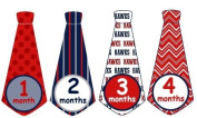 Monthly Baby Boy Basketball Tie Stickers Monthly Tie Stickers NBA Monthly Stickers Atlanta Hawks Monthly Tie Stickers Monthly Sports Stickers