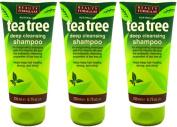 SIX PACKS of Beauty Formulas Tea Tree Deep Cleansing Shampoo 200ml