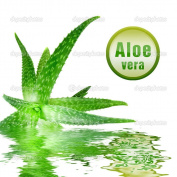 Aloe Vera Gel 1kg 99.9% Pure. Natural Skin Treatment for Sunburn or Dry and Irritated Skin, Shaving Rash and Razor Burn. Cosmetic Grade Natural Skin Care and Moisturiser, Great in Soap, Creams and Lotions