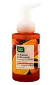 Foaming Hand Soap Orange Vanilla CleanWell 280ml Liquid