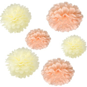 Set of 6 Ivory Peach DIY Wedding Flowers Party Tissue Paper Pompoms Birthday Party Nursery Hanging Decoration