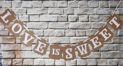Vintage Photo Props Love is Sweet Rectangle Wedding Bridal Western Decor Banner