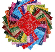 75 10cm Beautiful Blazing Bandanna Charm Pack