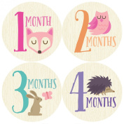 Woodland Monthly Baby Sticker, Baby Girl