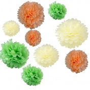 Generic Set of 18PCS Mixed Sizes Light Green Peach Ivoy Tissue Paper Pom Poms Wedding Flowers Bachelorette Party Birthday Bridal Shower Party Decoration