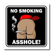 3dRose ht_25518_1 Butts No Smoking Black Sign 2 Iron on Heat Transfer, 20cm by 20cm