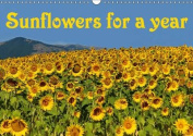 Sunflowers for a Year 2016