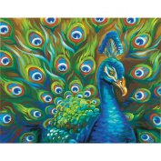 Dimensions Crafts 73-91477 Wild Feathers Paint