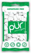 Pur Gum, Spearmint, 80ml
