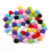 Hrhyme(TM) 20Pcs Rose Flower Flat Back Cabochons for Nail Art - Assorted Colours