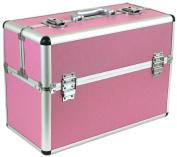 Pro Medium Aluminium Make Up Artist Cosmetic Travel Hard Case Studio Pink