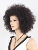 Fashion Afro Curly Kanekalon Hair Wig