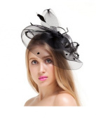 Beautiful Elegant Women/lady/girls Feather Net and Veil Fascinator Hair Clip Hat Hair Accessories Clip
