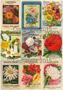 Victorian Vintage Seed Pack Flowers Large Collage Sheet 102