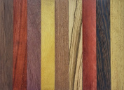 Exotic Wood Pen Blanks 9-Pack