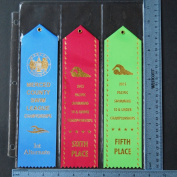 10 Swimming LARGE RIBBONS Organiser Storage PAGES Award Ribbon Holder Display Gift Swim