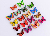 Domire Colourful Butterfly Night Light,Decorative Light-12PCS