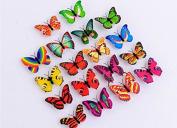 Domire Colourful Butterfly Night Light,Decorative Light-12PCS